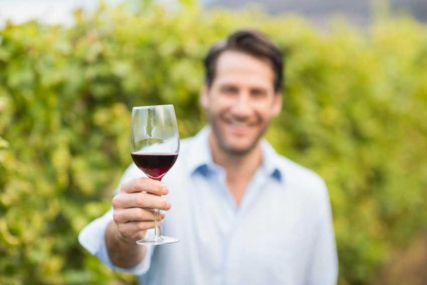 Sulfite - Schwefel im Wein