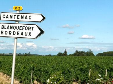 Bordeaux im August 2020